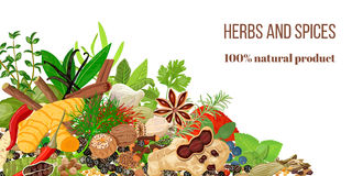 Card with Pile of Realistic popular culinary herbs and spices. Spice store logo. Shop sign Stock Photo