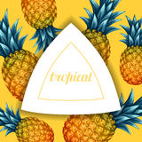 Card with pineapples. Tropical abstract frame in retro style. Image for holiday invitations, greeting cards, posters.  Stock Photography
