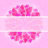 Card with Pink Flower and Horizontal Place for Text. Royalty Free Stock Photography