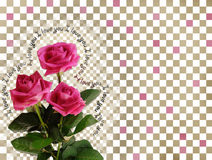 Card with pink roses on abstract background Stock Photo