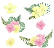 Card with pink yellow flowers shaped with text. illustration for Day Celebration Greeting. Tropical set summer bounquet frame on w stock illustration