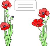 Card with poppy flowers Royalty Free Stock Images
