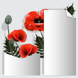 Card for records with red flowers. Stock Image
