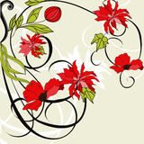 Card with red flowers Royalty Free Stock Photo