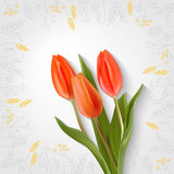 Card with red tulips. Hand drawing flowers and three red tulip. Spring card. Vector realistic tulips on a light background with a shadow. Frame gray flowers Stock Photos
