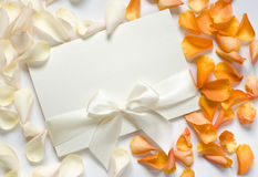 Card with ribbon and rose petals stock image