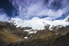 Card Rola glacier in China's Tibet Royalty Free Stock Photo