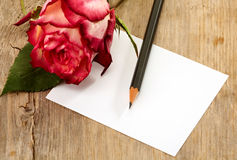 Card and rose Royalty Free Stock Photos