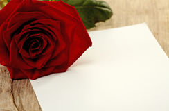 Card and rose Stock Photography