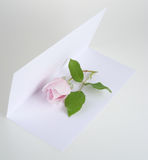 Card and rose. A card and pink rose Stock Images