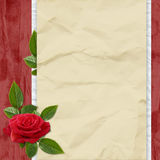 Card with rose and leaves on the red background. Crushed paper with rose and leaves on the red background Stock Images
