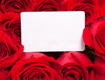 Card and roses Royalty Free Stock Photography