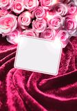 Card and roses on magenta velvet. Royalty Free Stock Images