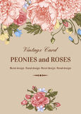 Card with roses and peonies. royalty free illustration