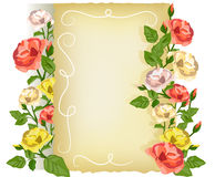 Card with roses and vintage paper Royalty Free Stock Photos