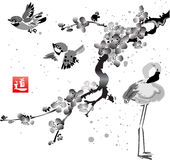 Card with sakura in the bird and flamingos Royalty Free Stock Photo