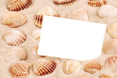 CARD ON SAND WITH SEA SHELL. White greeting card on sand of a beach with sea shell Royalty Free Stock Image