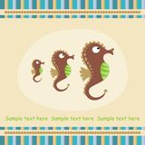 Card with sea horse. Greeting card with sea horse Stock Image