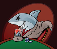 Card Shark Stock Photography