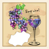 Card with sketch grapes, wine Stock Photos