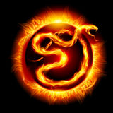 Card with snake. Colorful Card with Fire Snake. Twenty thirteen new year Stock Image