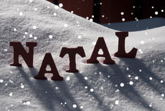 Card With Snow And Word Natal Mean Christmas, Snowflakes. Red Letters On White Snow As Christmas Card.  Portuguese Word Natal Means Christmas. Snowy Scenery With Royalty Free Stock Image