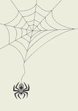 Card with spider and cobweb. Spider and cobweb for your halloween design vector illustration