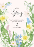 Card with spring flowers. Royalty Free Stock Photography