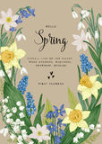 Card with spring flowers. Royalty Free Stock Image