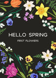 Card with spring flowers. Royalty Free Stock Images