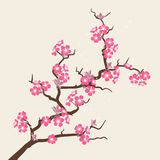 Card with stylized cherry blossom flowers Stock Images