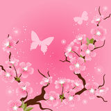Card with stylized cherry blossom flowers Stock Image