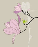 Card with stylized magnolia Stock Photography