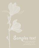 Card with stylized magnolia. Retro Royalty Free Stock Photos