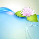 Card with stylized waterlily Stock Image