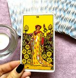 Nine IX of Pentacles Tarot Card. This card is about Success, Profits, Prosperity, Wealth, Financial Stability and Financial Strength stock photography