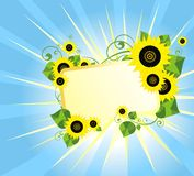 Card with sunflowers Royalty Free Stock Images