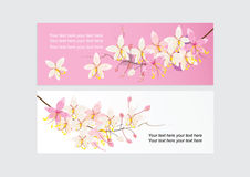 Card or tag for marketing Promotion with pink cassia flower design Stock Image