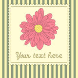 Card template with big flower Royalty Free Stock Photography