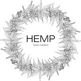 Template hemp 2 BW vector illustration