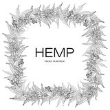 Template hemp 2 BW. Card, template hand drawing a wreath of hemp leaves. Black and white graphics, vector illustration stock illustration