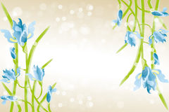 Card template with Iris flowers. Beautiful illustration with place for text vector illustration