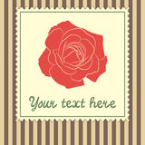 Card template with red rose Royalty Free Stock Photos