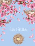 Card template with watercolor spring blooming cherry tree branches and bird nests. Greeting background, hand painted on a blue background Royalty Free Stock Photos