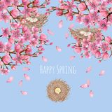 Card template with watercolor spring blooming cherry tree branches and bird nests, greeting background. Hand painted on a blue background Stock Photography
