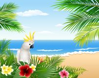 Card with tropical beach, tropical plants and parrot Royalty Free Stock Image