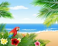 Card with tropical beach, tropical plants and parrot Royalty Free Stock Photography