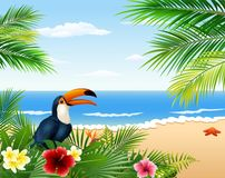 Card with tropical beach, tropical plants and toucan Stock Photos