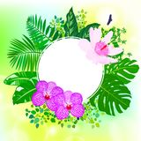 Card with tropical flowers, palm and banana leaves Royalty Free Stock Images