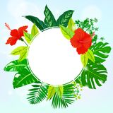 Card with tropical flowers, palm and banana leaves Stock Photos